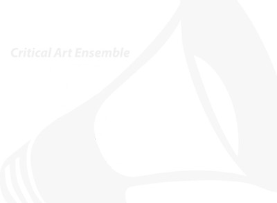 Critical Art Ensemble