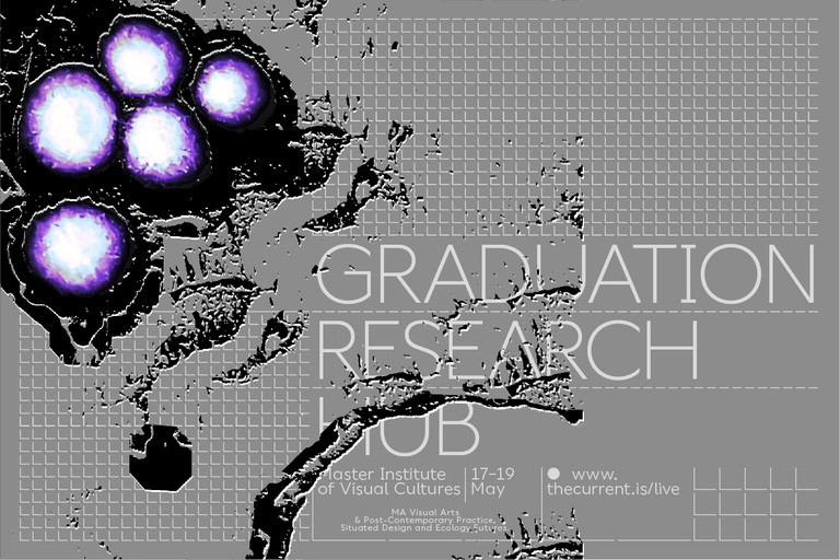 Graduation Research Hub: Live Alone Die Together